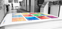 Go Digital; But Don't Exclude Print