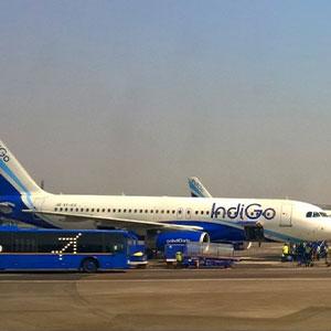 inidgo-airline